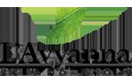 L'avyanna Skin Naturals